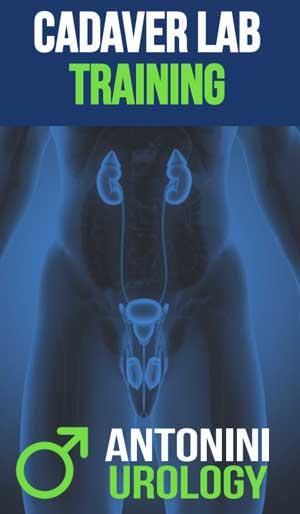 grafica promo Cadaver Lab Training Center Penile Prosthesis Implant antoniniurology 2021